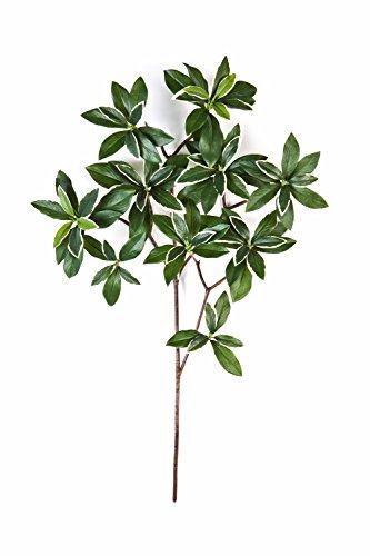 artplants – Künstlicher Japanischer Spindelstrauch Zweig Sachiko, 95 Blätter, grün-weiß, 55 cm – Kunstpflanzen AST/Deko Pflanze