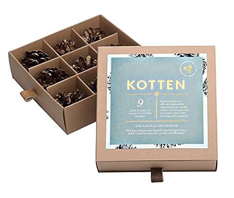 9 Stück Anzünder aus Schweden für Kamin, Grill, offenes Feuer, Geschenk-Set, natürliche Kiefernzapfen mit Wachs, in dekorativer Box - Salmon Gift Box