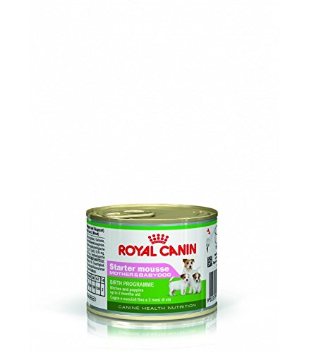 Royal Canin Starter Mousse 12 x 195 GR