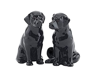 Fine China Black Labrador Salt and Pepper Pots from Quail Ceramics