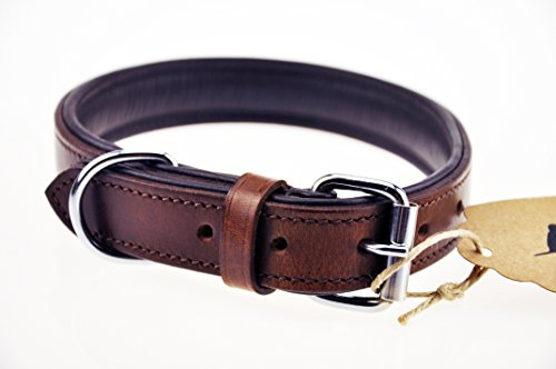 Schnüffelfreunde Hundehalsband aus Leder (M – 28-36cm, Braun) - 4