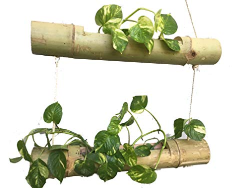 NAOE Bamboo 2 Steps Hanging Planter (Brown)