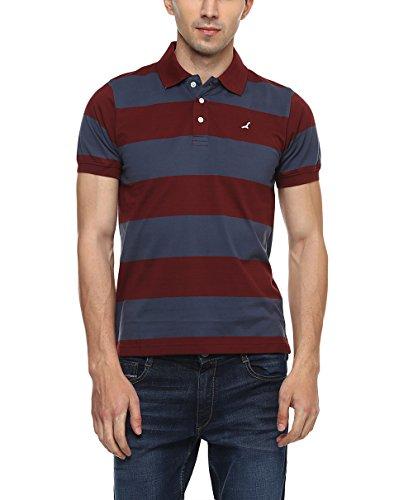 AMERICAN CREW Men's Cotton Polo T-Shirt (AC089_Blue)