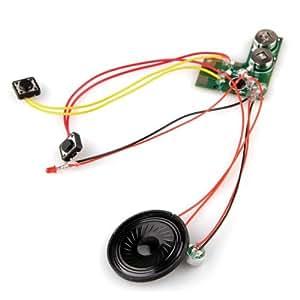 Sound Aufnahme Geräusch Decoder Modul 10 Sekunden Neu