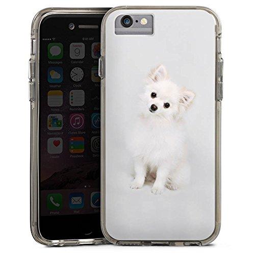 Apple iPhone 6 Bumper Hülle Bumper Case Glitzer Hülle Hund Welpe Chien Bumper Case transparent grau