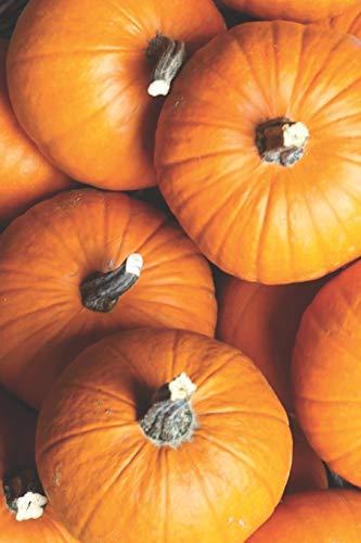 Pumpkin Patch Portable ()
