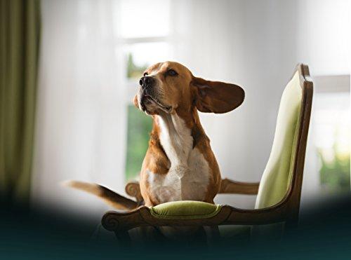 Frontline Pet Care Ear Cleaner Gel - 125ml 3