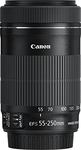 Canon EF-S 55-250mm 1:4-5.6 IS STM Tele-Zoomobjektiv - 2