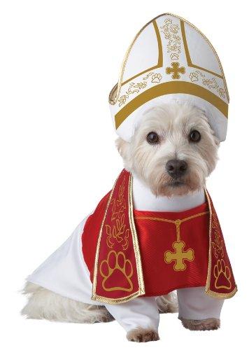 Pup-A-Razzi Costume de saint pour chien