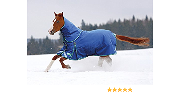 Shires Winter Typhoon 300 Turnout Rug /& Neck Set Navy//Green