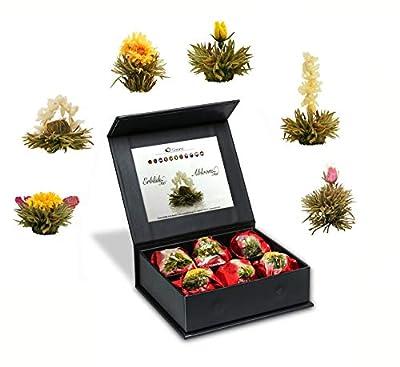 Mix de fleurs de thé blanc en boîte aimantée noble avec gaufrage argenté – 6 thés fleuris Thé blanc (6 sortes différentes de roses de thé)
