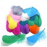 LAGIGO Plumas de Colores 500PCS, de artesanía Natural Plumas de Ganso para Disfraces, Bolsos, decoración de aretes, atrapasueños de Bricolaje, Festival de Bodas, Decoraciones para Fiestas en el hogar