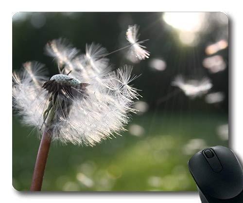 Hohe Qualität Büro Maus Pad Pusteblume Löwenzahn Löwenzahn Samen 54300 Gemütliche Atmosphäre Schöne natürliche Blumen Thema
