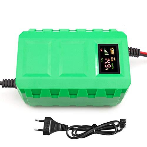 Caricabatteria al piombo acido batterie batterie per auto intelligente 12V con display a LED per automobile LED per moto