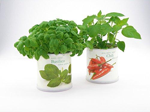 Extragifts Fiori in lattina Set - 3 piante da cucina italiana