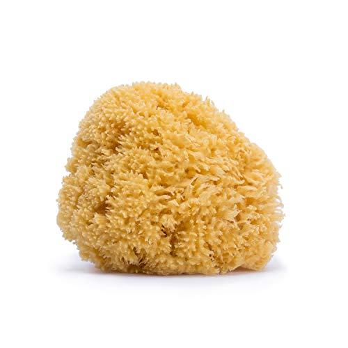 Suavinex - Esponja 100% natural bebé. materiales