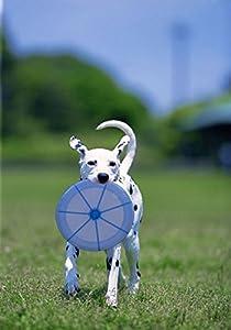 Myfei® disque volant jouet pour animaux Dressage de chien Electroluminescent Jouets lumineux clignotant pour animal domestique d'entraînement Frisbee Endurant résistance au Bite Brillance Soucoupe volante Funny jouet pour chien