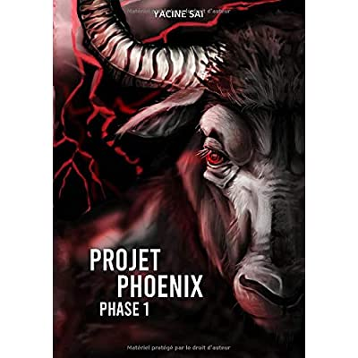 Projet Phoenix: Phase 1