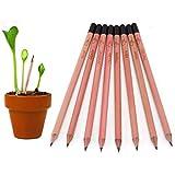 matita di pianta della lapis della matite di germoglio lapis planata con i semi per il regalo di compleanno di DIY degli allievi dei capretti (5 scatole)
