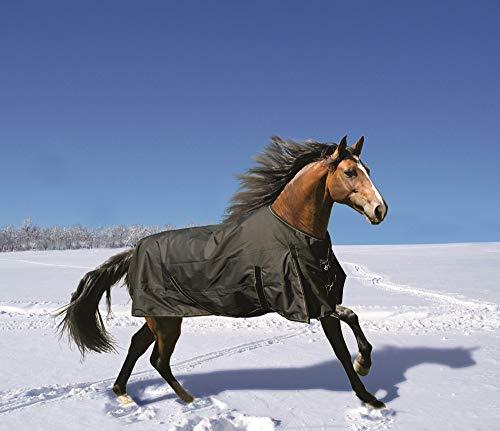 Euroriding Winterdecke Fairbanks Ausführung 100g (schwarz, 145cm)