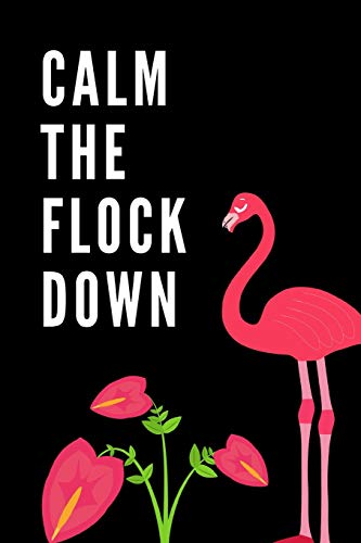 Calm The Flock Down: The Ultimate Summertime Pink Wading Bird Journal: This is a 6X9 102 Page Diary To Write Things in. Makes a Great Summer Time Beach Vacation Lover's Gift For Men or Women. -