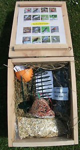 Wild Bird Gift Hamper - Selection of Wild Bird Treats