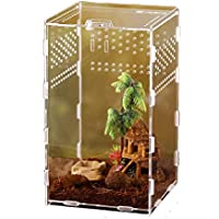 Premium trasparente Reptile Allevamento di sicurezza aria Hole design terrario Acrilico Snap Tipo di alimentazione di sicurezza del rettile per animali Box per i ragni Scorpions piccoli serpenti, ecc.