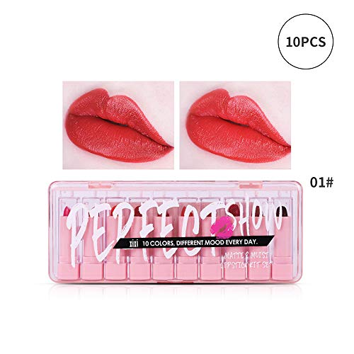 Xiton 10PCS Mini Lipstick Set Full Moisturizing Smooth Lip Stick Waterproof Creamy Lipsalve Pro Make Up Cosmetic For Women Girls(01)