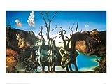 Salvador Dalí Poster/Kunstdruck Reflections of Elephants 80 x 60 cm