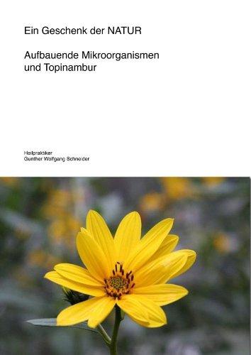 Ein Geschenk der NATUR - Aufbauende Mikroorganismen und Topinambur