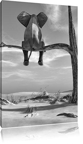 sitzender Elefant auf einem Ast in der Wüste Kunst B&W, Format: 80x60 auf Leinwand, XXL riesige Bilder fertig gerahmt mit Keilrahmen, Kunstdruck auf Wandbild mit Rahmen, günstiger als Gemälde oder Ölbild, kein Poster oder Plakat -