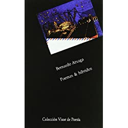 Poemas & híbridos: 250 (Visor de Poesía)