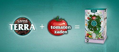 canna-starter-set-tomate-inkl-topf-erde-samen-dunger