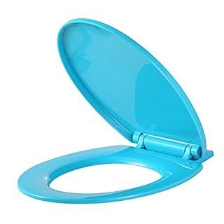 Vinsani Soft Close Aqua WC Bathroom Toilet Seat