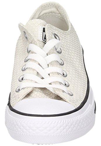Converse Ctas Ox, Sneakers Femme blanc cassé