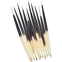 YNuth 10pcs Epines De Porc-épic Porcupine Quills Pour Fabrication De Pêches Bouées Flotteurs (10-12cm)