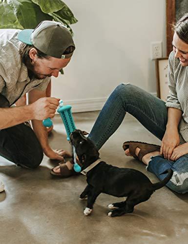 FRISTONE Hunde Kauspielzeug Welpen Hundespielzeug Intel… | 08431238973941