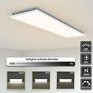 LED Panel Light 120x30cm Dimmable 40W Ultra-Thin Flush mounting Flat Ceiling Light 3200LM, Equal to 200W Fluorescent Bulb, Natural White 4000k Silver Frame