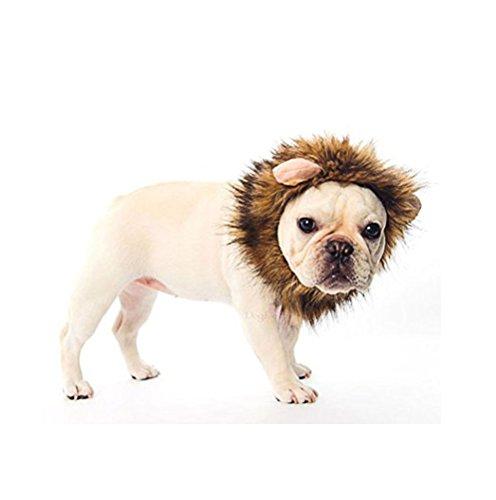 Ducomi® Simba - von Mane Lion King für Hunde und Katzen in weiches Haar Ecological mit Ohren - Machen Sie die Perücke, um Ihren Hund und Ihre Katze Trägt (S, Braun)