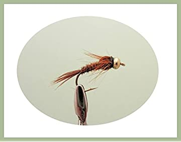 Pheasant Tail Nymph Flies Fishing 6 Pack for trout or Grayling Choice of Sizes
