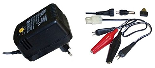 Fullwat Chargeur CPA300 50-300 mah