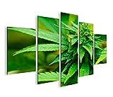 islandburner Bild Bilder auf Leinwand Weed Grass Ganja MF XXL Poster Leinwandbild Wandbild Dekoartikel Wohnzimmer Marke