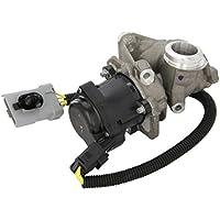 Fuel Parts EGR110 Valvula de Recirculacion de los Gases de Escape (RGE) Y Sensor