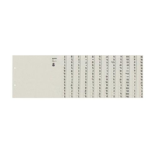 Leitz 13120085 Registerserie A-Z, A4, Papier, für 12 Ordner, grau