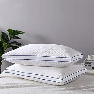 Gestepptes Baumwollsatin-Kissen - hypoallergisch und pflegeleicht Bettkissen zum Schlafen 2er Pack Queen-Baumwolle und Daunengefülltes, verstellbares Zip-Kissen (Queen 20 x 30 Zoll)