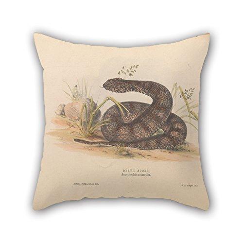 artistdecor-oil-painting-helena-forde-death-adder-acanthophis-antarctica-pillowcase-best-for-dining-