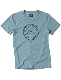 Abercrombie - Homme - Burnout Logo Graphic Tee T-Shirt Top - Manche Courte