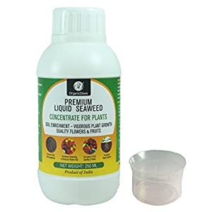 OrganicDews Liquid Seaweed Concentrate for Plants 250 ml with Measuring Cup 25 ml Fertilizer for All Indoor and Outdoor…