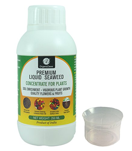 OrganicDews Liquid Seaweed Concentrate for Plants 250 ml with Measuring Cup 25 ml