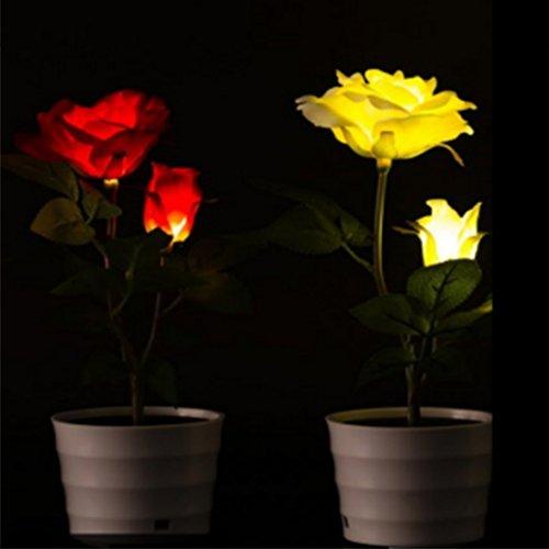 Home Sterne-akzent-tabelle (Zantec Garten Dekorative Landschaft Rasen Licht für Yard Pathway Patio, LED 0.12W Solarbetriebene Hortensienblume LED Licht Nachtlampe Wasserdicht IP65 Lichtsteuerung Außen)